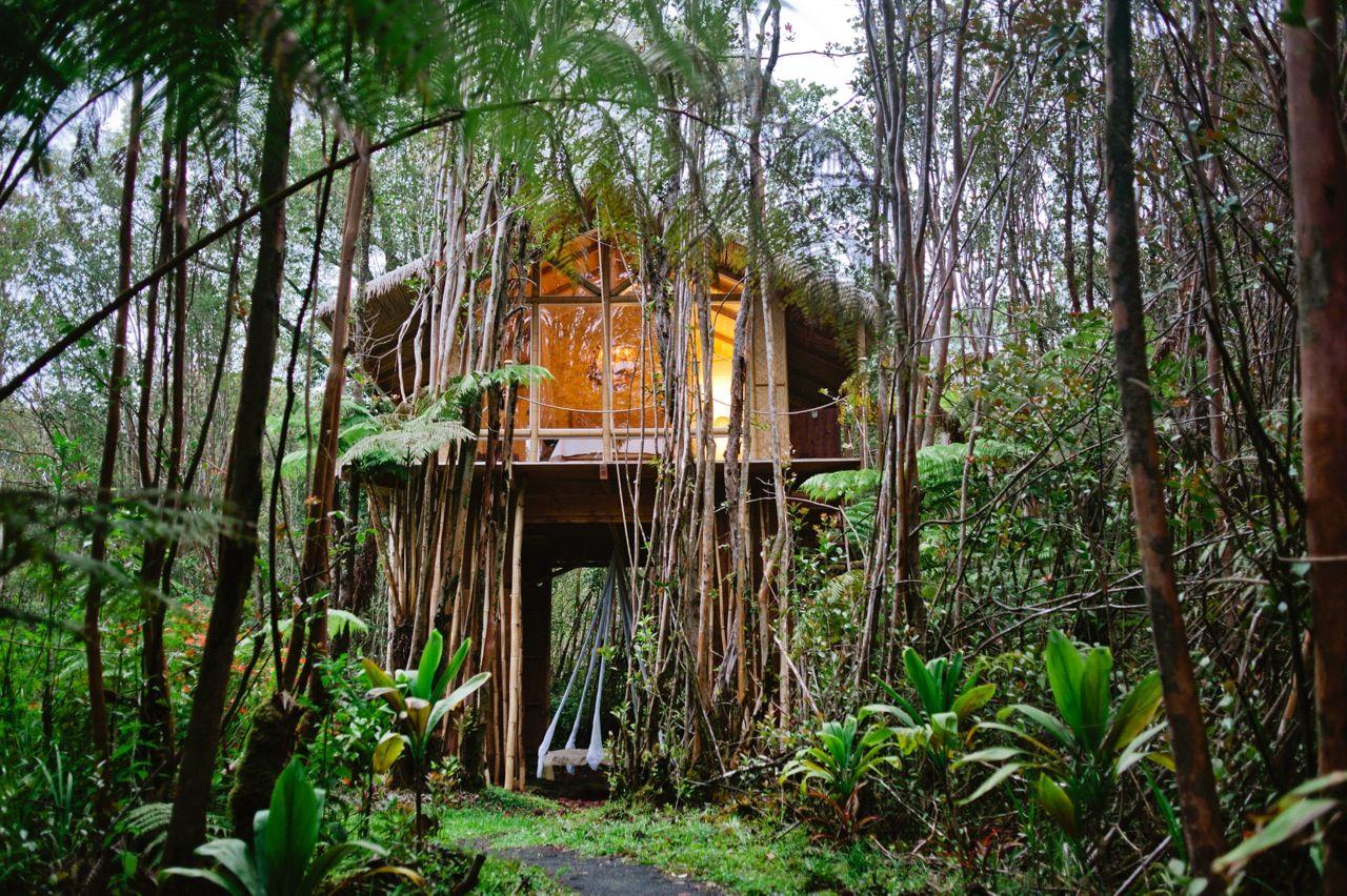 house crush off the grid hawaiian treehouse backyard treehouse