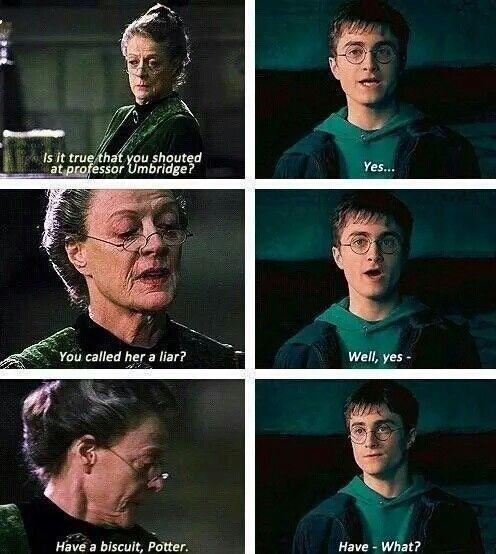 Professor Umbridge Harry Potter Jokes Harry Potter Puns Harry Potter Funny