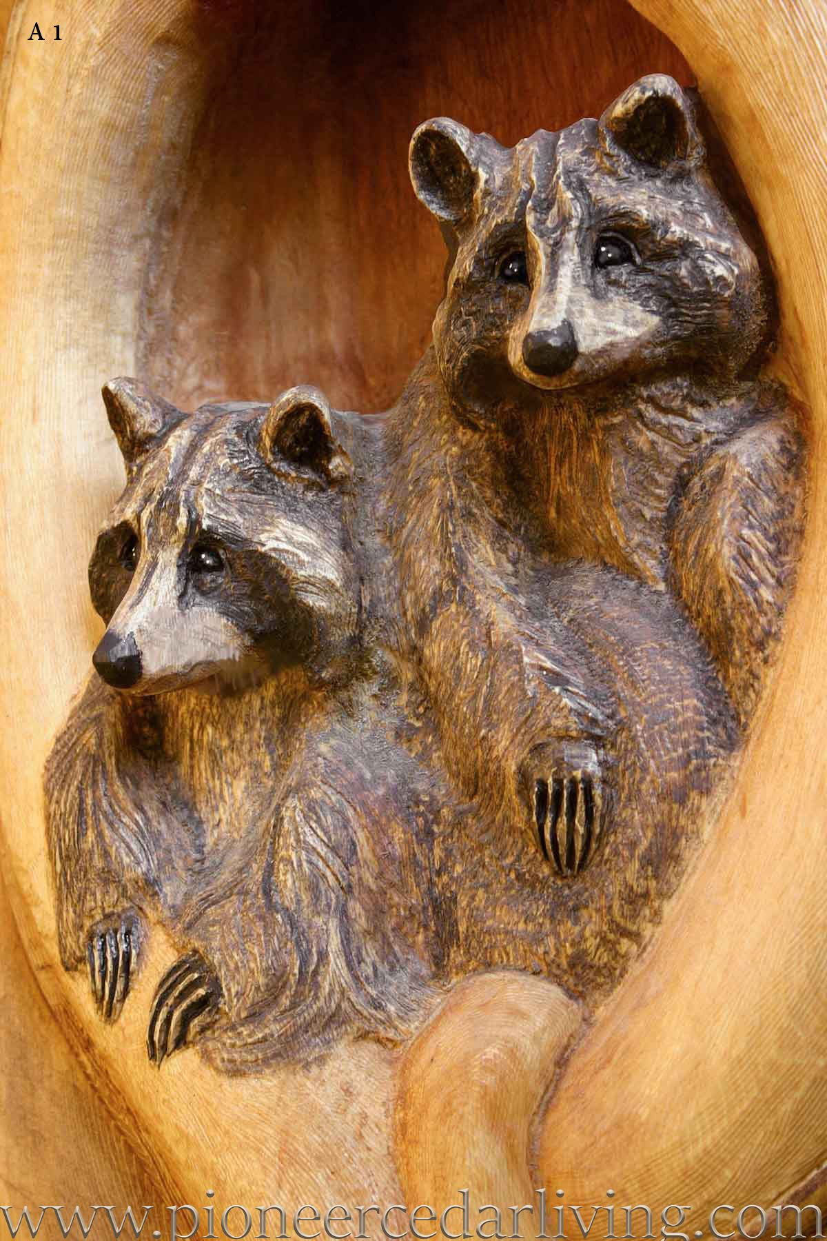 Custom wood carving of two raccoon pioneer cedar living chainsaw