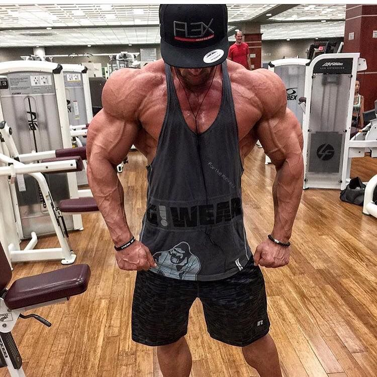 8928598e Bodybuilding Clothing UK - The home of Gorilla Wear #gorillawear  #motivation #gymtime #squats #ukfitfam