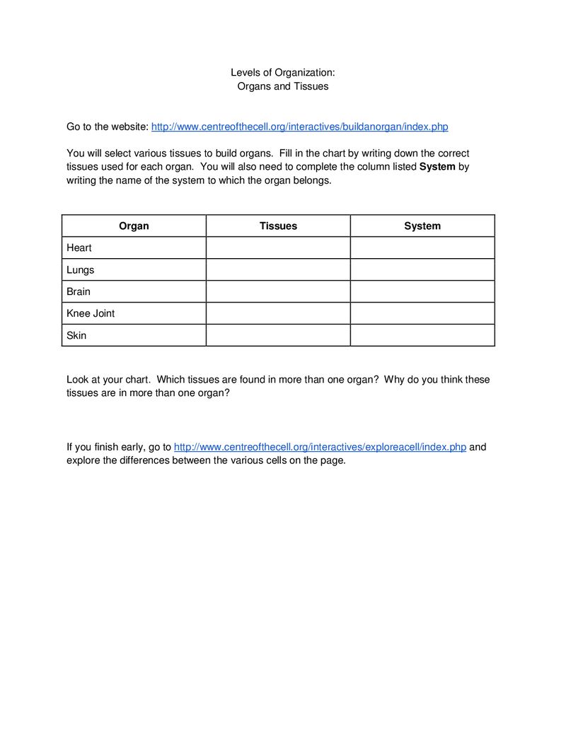 Levels of Organization Worksheet Organization