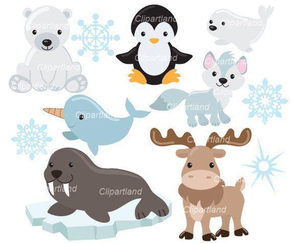 Sofortdownload Arktische Tiere Clipart Caa 2 Personliche Und Kommerzielle Nutzung Products Arktische Caa2 Cl Tiere Clipart Arktische Tiere Clipart