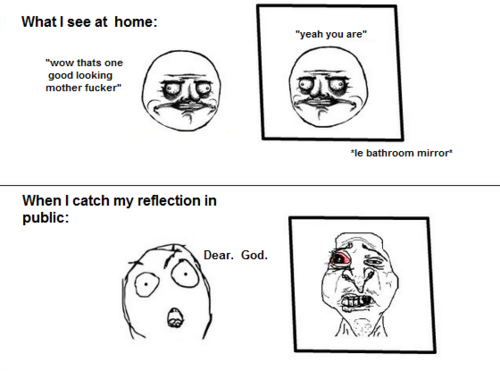When I Catch My Reflection In Public Funny Memes Meme Reflection Mirror Funny Quote Funny Quotes Humor Humor Quotes Funn With Images Funny Quotes Funny Memes Fun To Be One