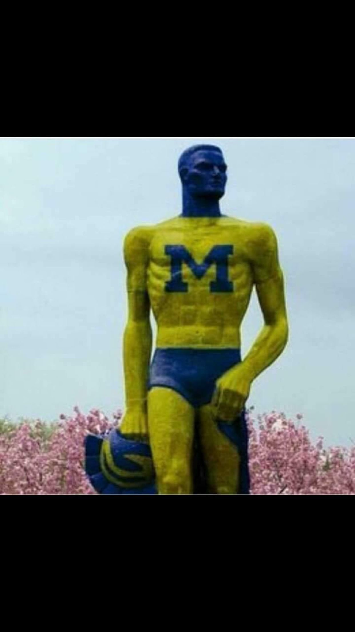 Pin by Bill Mohler on University of Michigan Go blue
