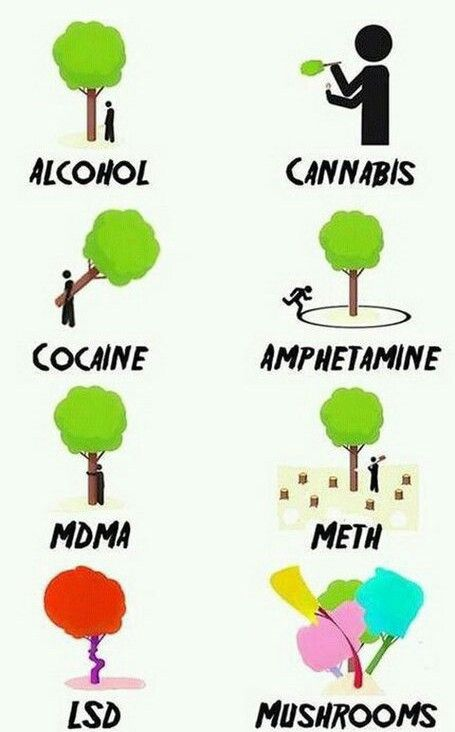 Know your drugs