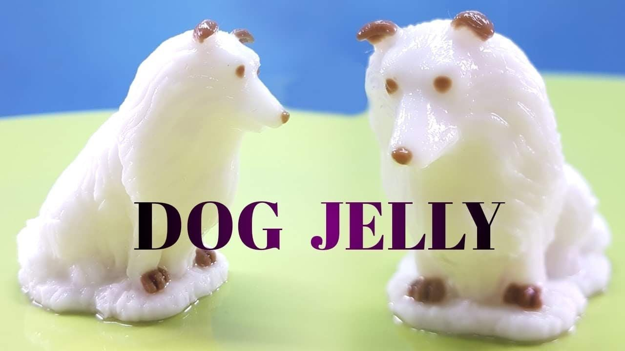 can dogs eat coconut milk