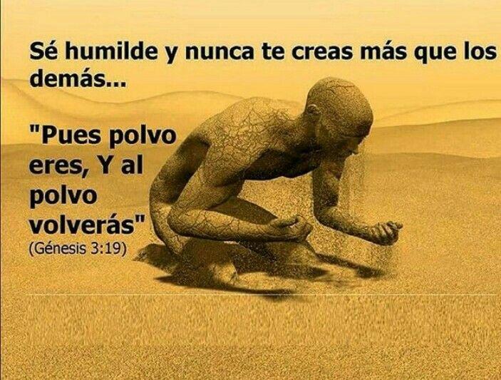 Pin De Cassandra En Dios Es Mi Fortaleza Frases Sobre La Humildad Humildad Reflexiones Cristianas