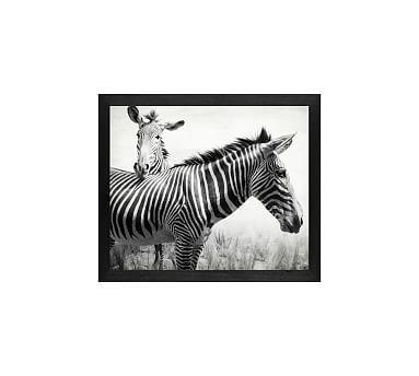 """Zebras by Lupen Grainne, 13 x 11"""", Wood Gallery Frame, Black ..."""