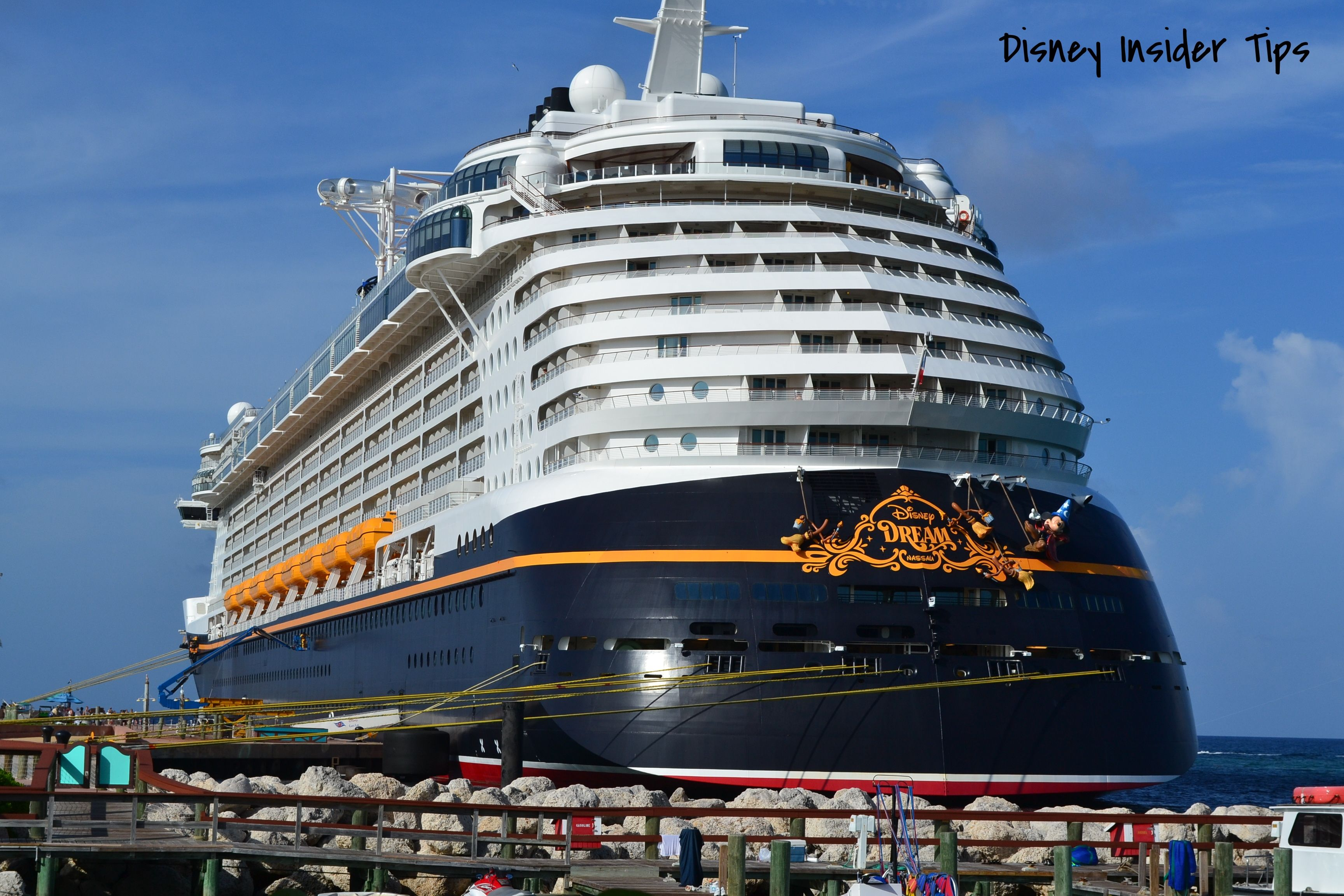 how to work on a disney cruise ship