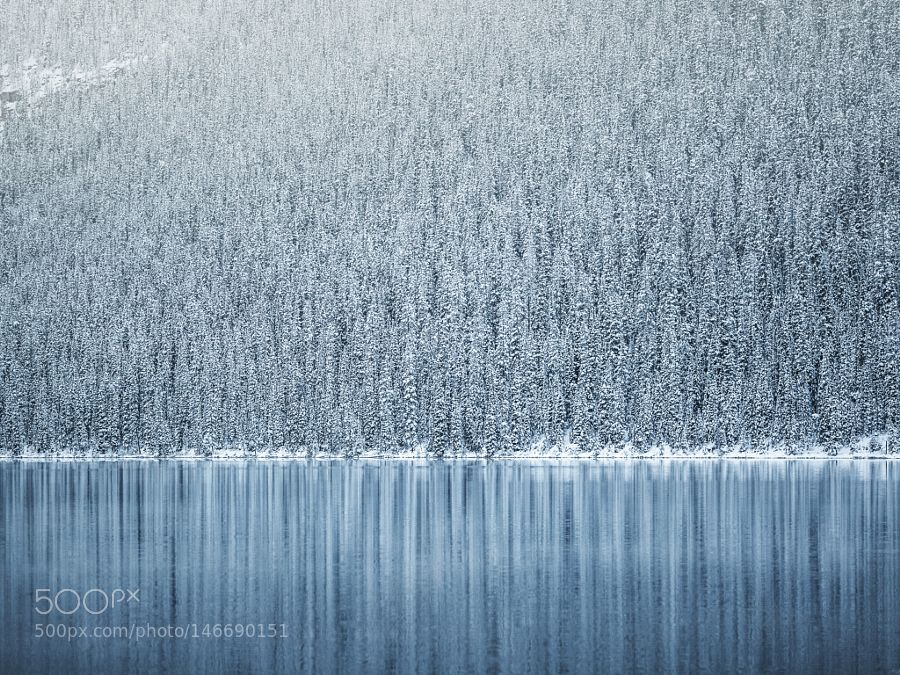 Winter's Advance by nicholasdyee. Please Like http://fb.me/go4photos and Follow @go4fotos Thank You. :-)