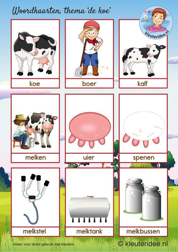 Woordkaarten 1 Thema Koe Kleuteridee Kleuters Cow Theme