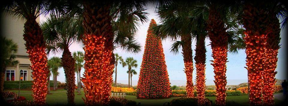 Christmas at the Ritz Carlton, Amelia Island, Florida.   Amelia island, Island, Florida coastline