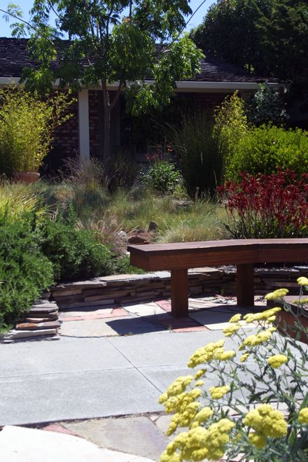 Sustainable, Low Water Garden Design In San Jose, California | Taproot Garden  Design U0026