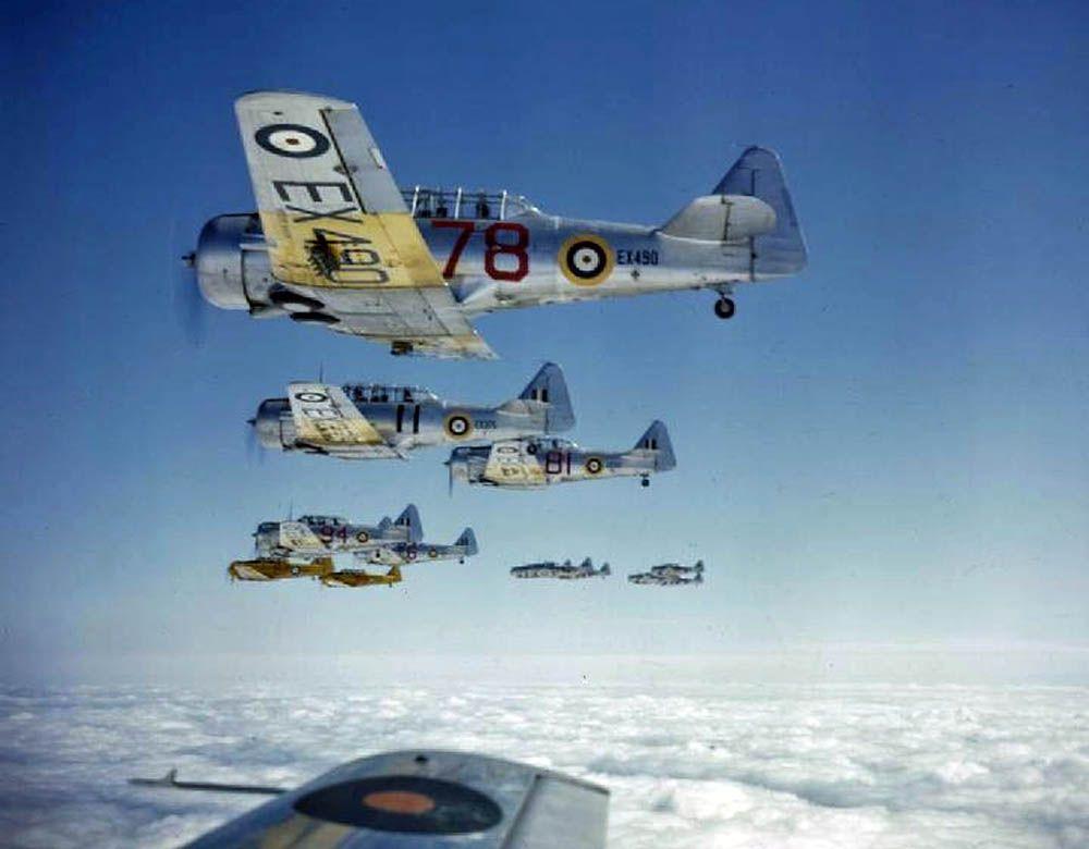 RAF Harvards