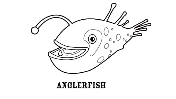 Smiling Angler Fish Coloring Pages Best Place To Color Basteln
