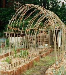 Twig Archway:   http://www.allotmentforestry.com/fact/arch.htm