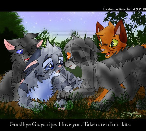 Warriors Fire And Ice Book: Forest Of Secrets-Scene By JB-Pawstep On DeviantART