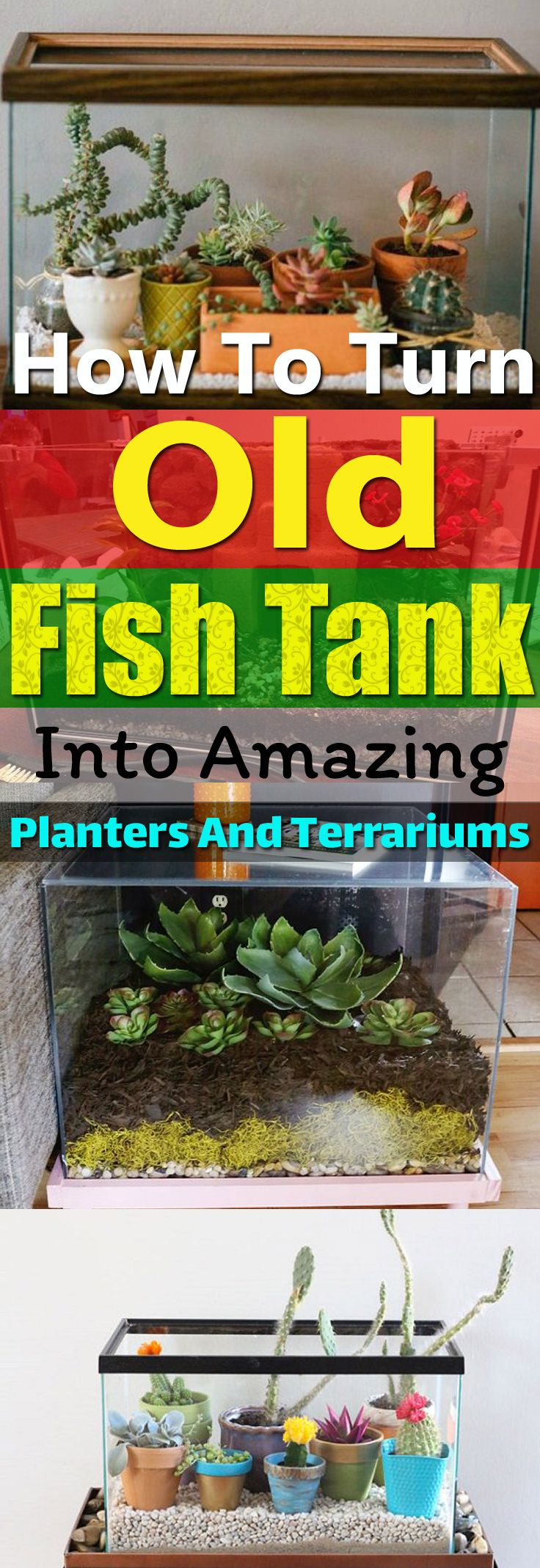 How To Turn Old Fish Tanks Into Amazing Planters And Terrariums