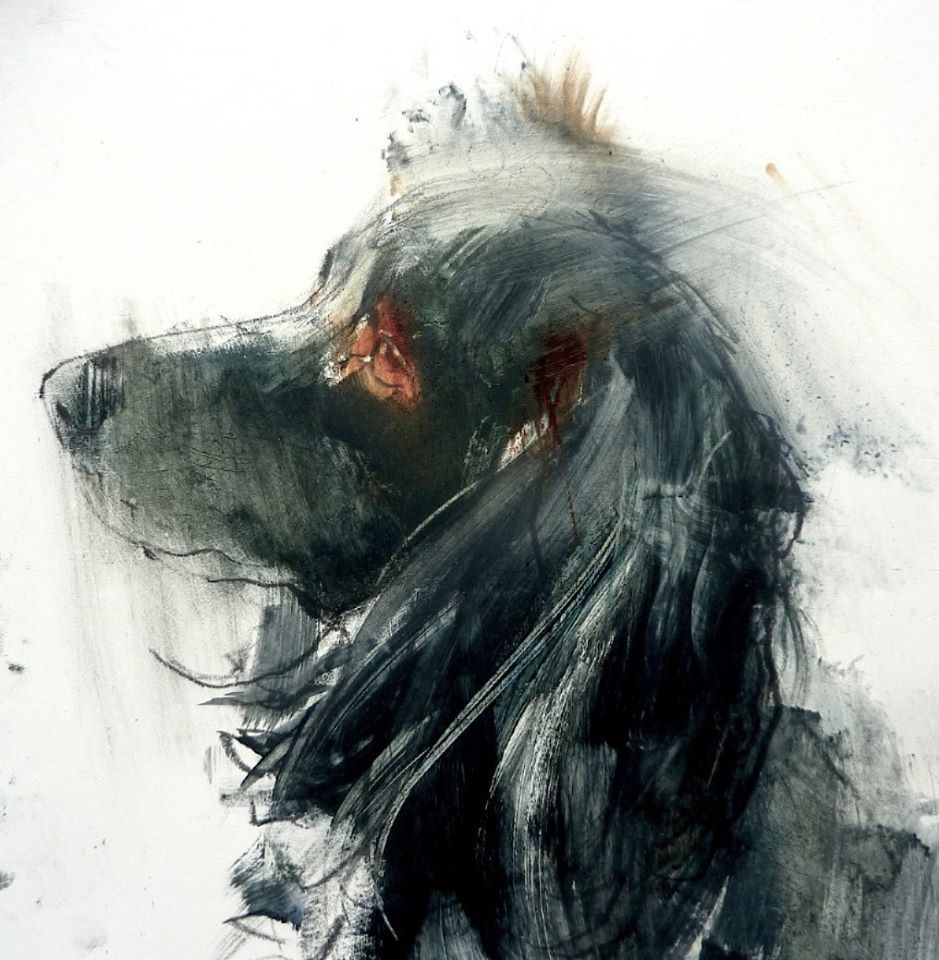 Tom Homewood With Images Animal Paintings Watercolor Dog Dog Art