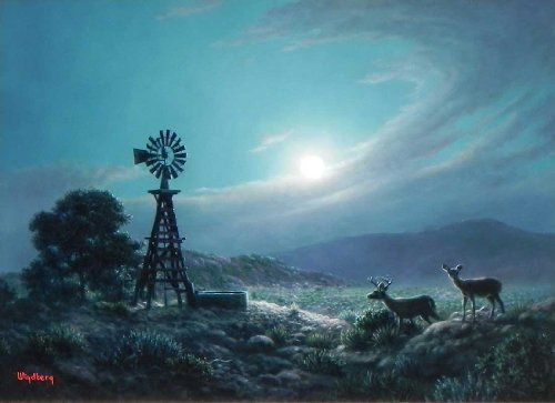 dalhart windberg moonlight