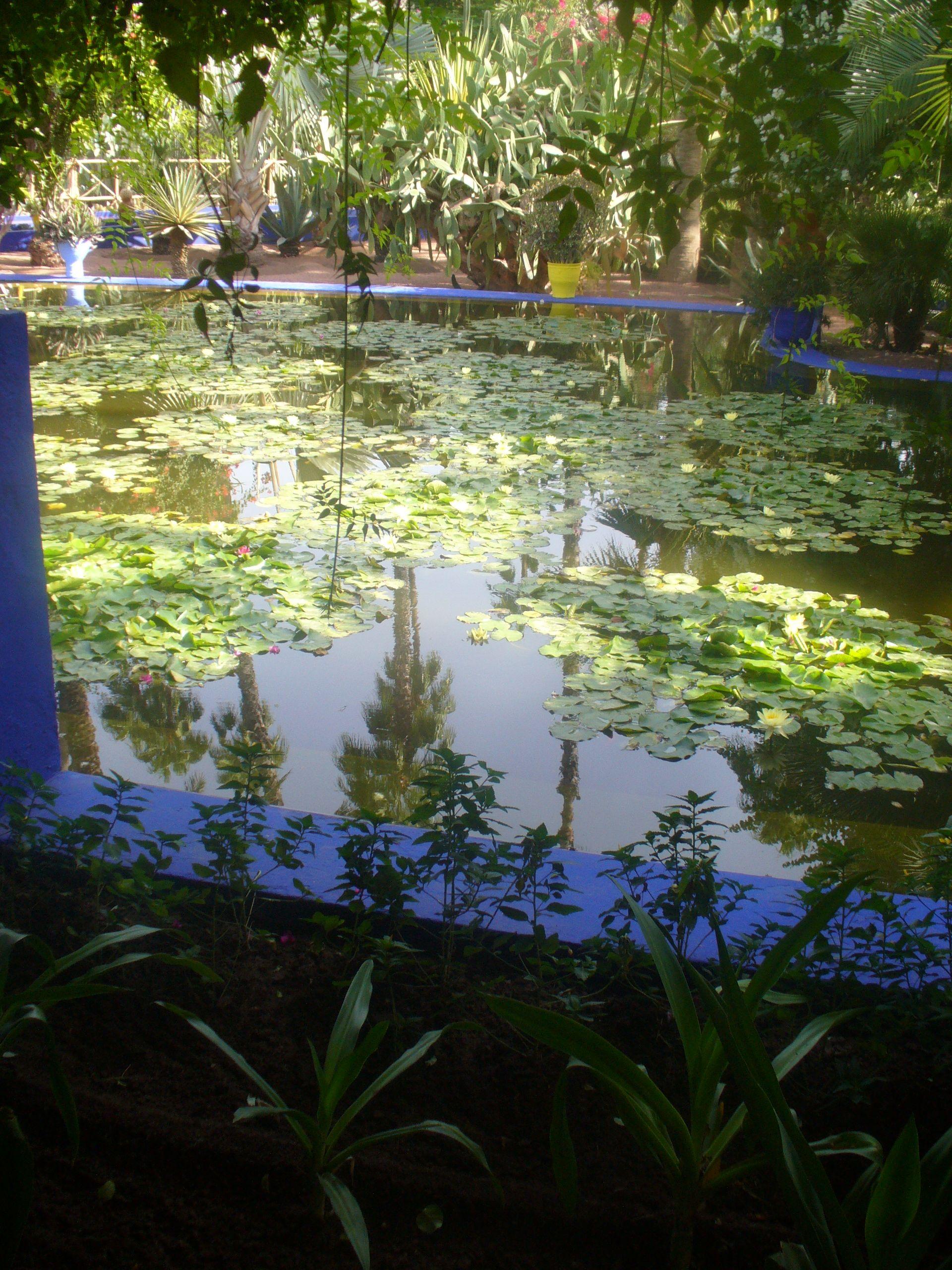 YSL gardens Marrakech | Beautiful world, Beautiful places ...