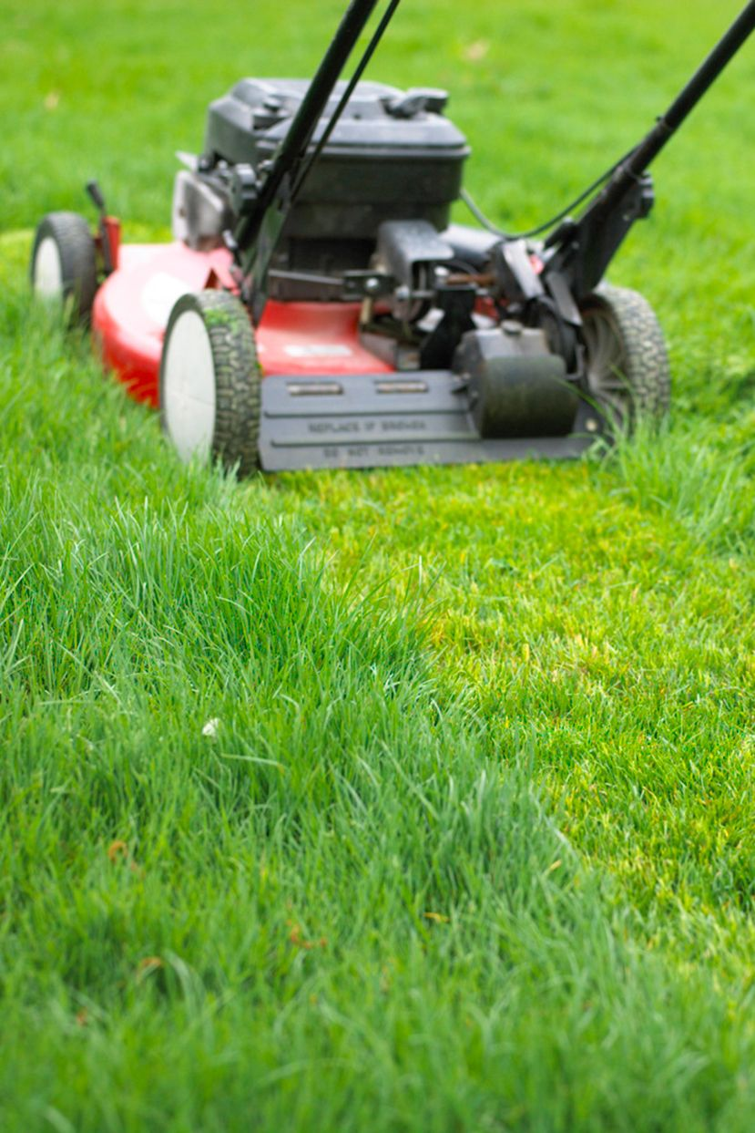 5 Common Mistakes You Might Be Making Every Time You Mow Your Lawn In 2020 Lawn Care Tips Lawn Garden Remedies