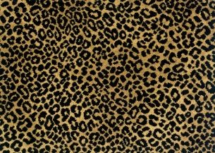 Stanton Lake Jaguar Gold Black Stanton Carpet Animal Print Carpet Rugs On Carpet