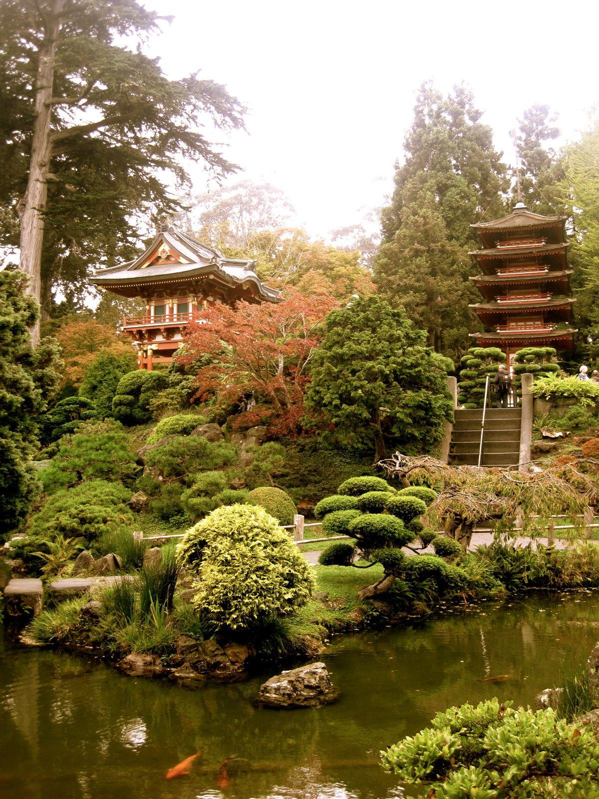 View from the tea house lotus zen garden japanese