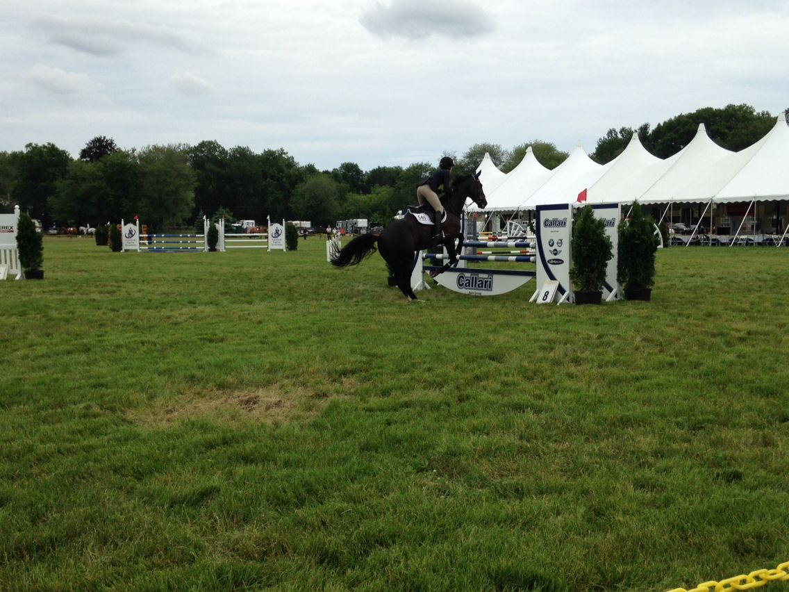 My photo I took from the hunt club horse show