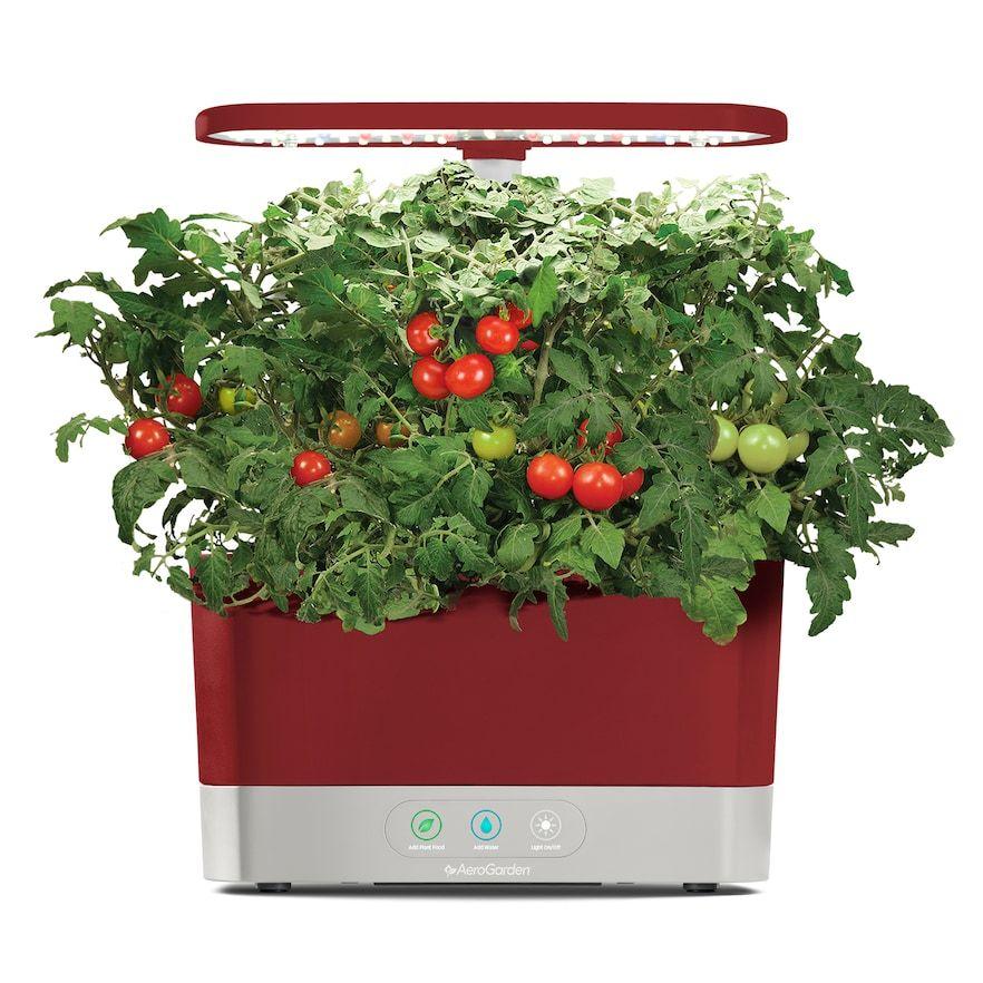 Aerogarden Harvest With Gourmet Herb Seed Pod Kit Herb 640 x 480