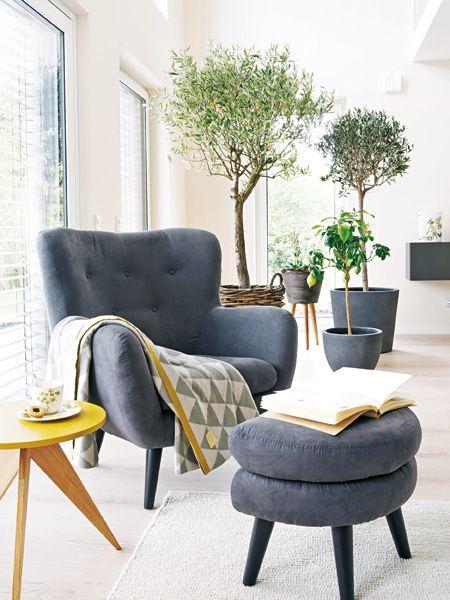 Wohnzimmer mit Wohlfühl-Atmosphäre Sitzen, Fenster und Raum - pflanzen dekoration wohnzimmer