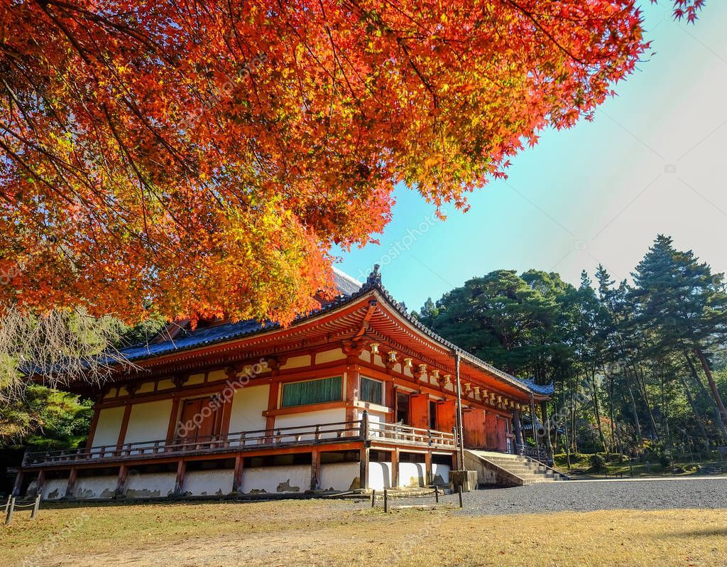 Autumn scenery in Kyoto, Japan - Stock Photo , #AD, #Kyoto, #scenery, #Autumn, #Photo #AD #autumnscenery