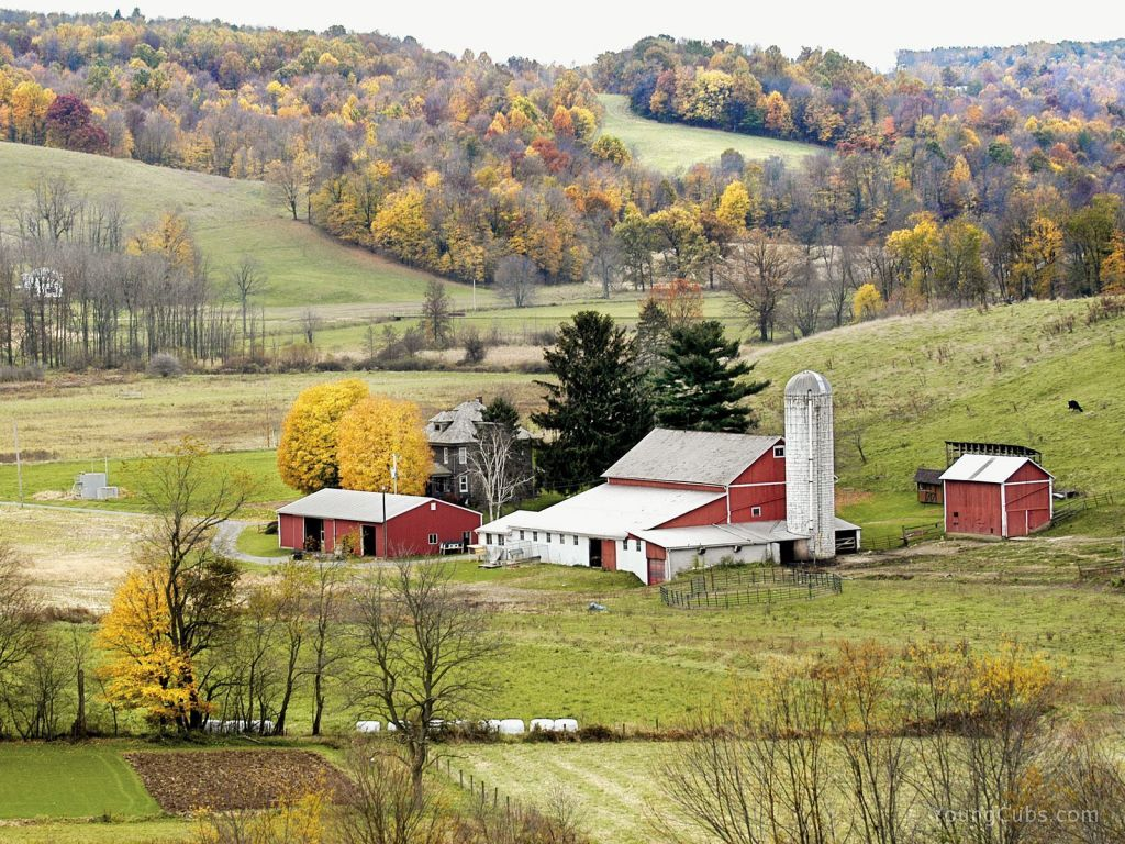 Amish country ohio so many precious memories of days in for Cabine millersburg ohio paese amish