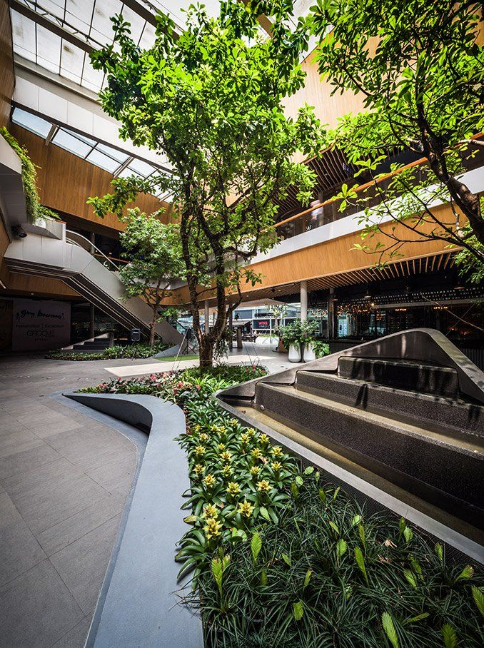Walk of the Town, The Landscape Architecture of Groove
