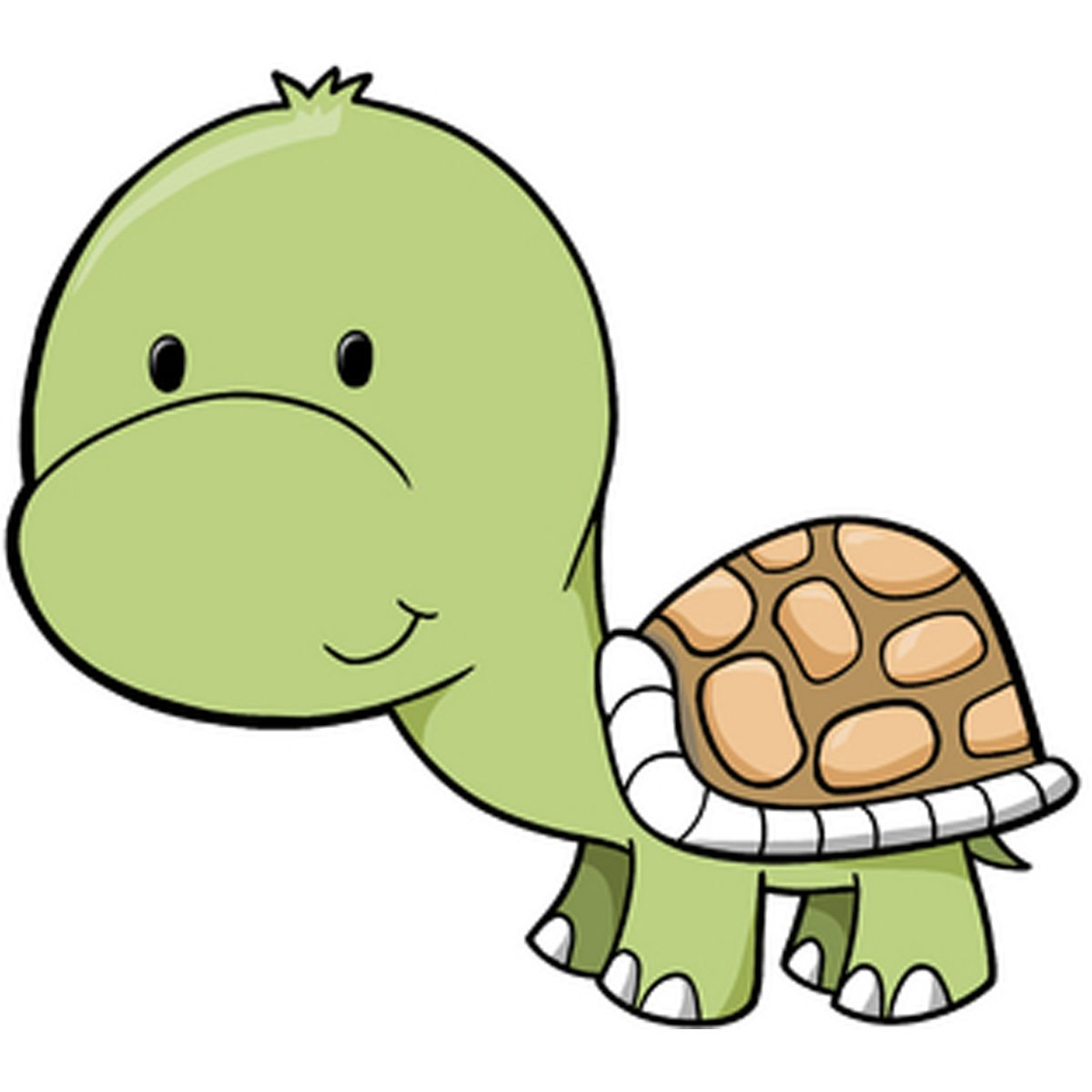 turtle | Cute | Cute baby turtles, Baby turtles, Cartoon ...