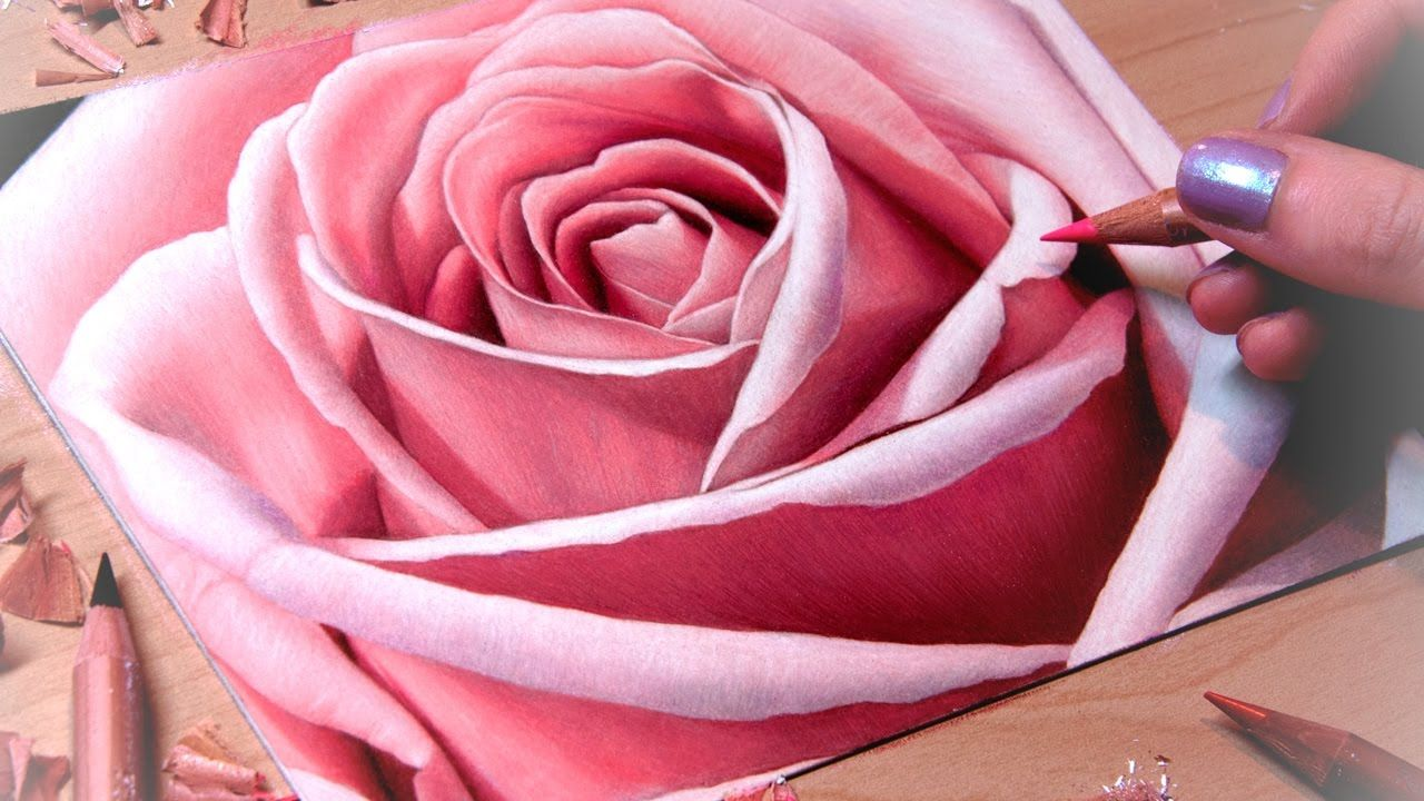 Drawing A Rose Close Up Realistic Flower Drawing Color Pencil Drawing Flower Drawing