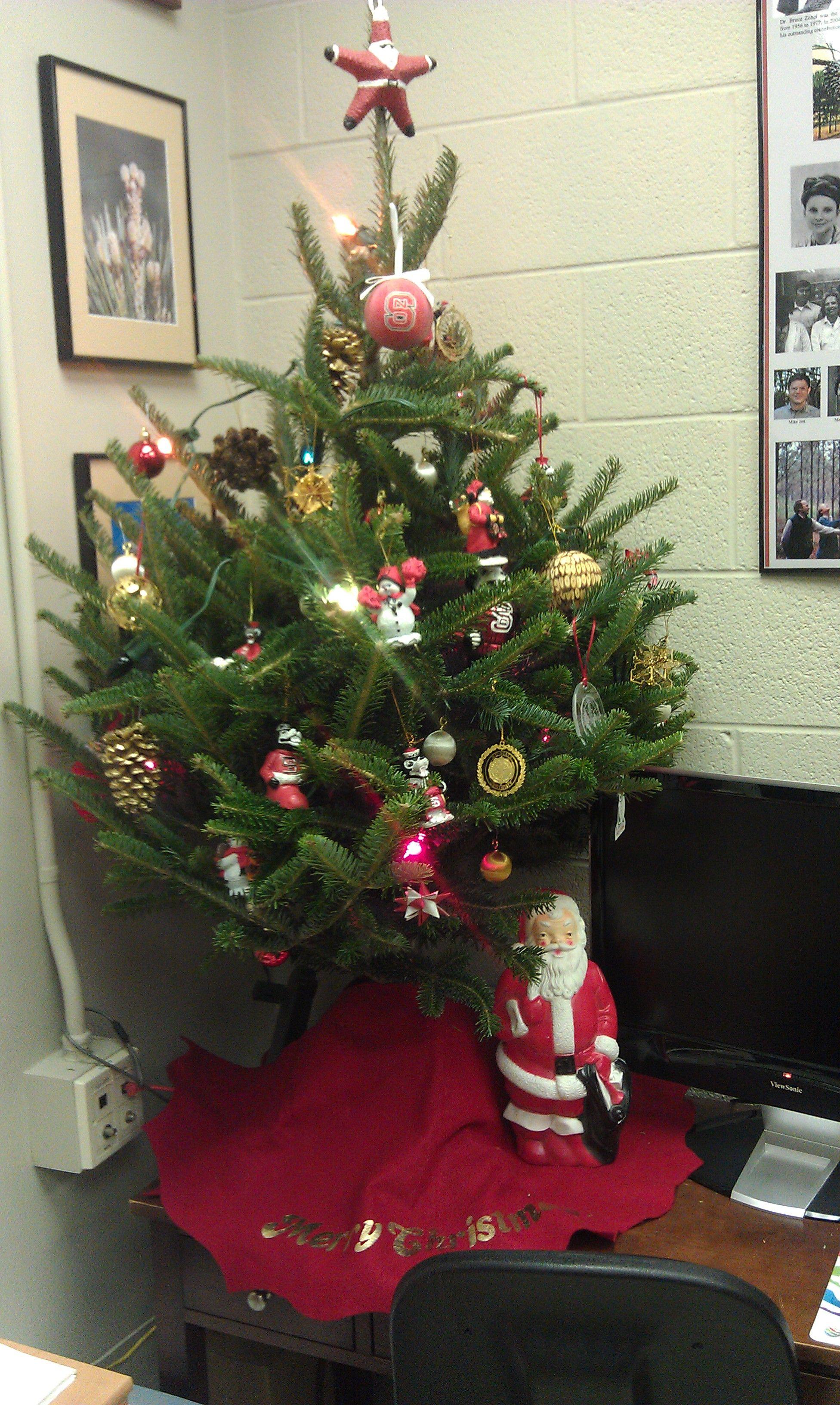 A Nc State Christmas Tree State Christmas Tree Christmas Tree Holiday Decor