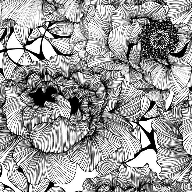 Black And White Pictures Of Flowers Prints