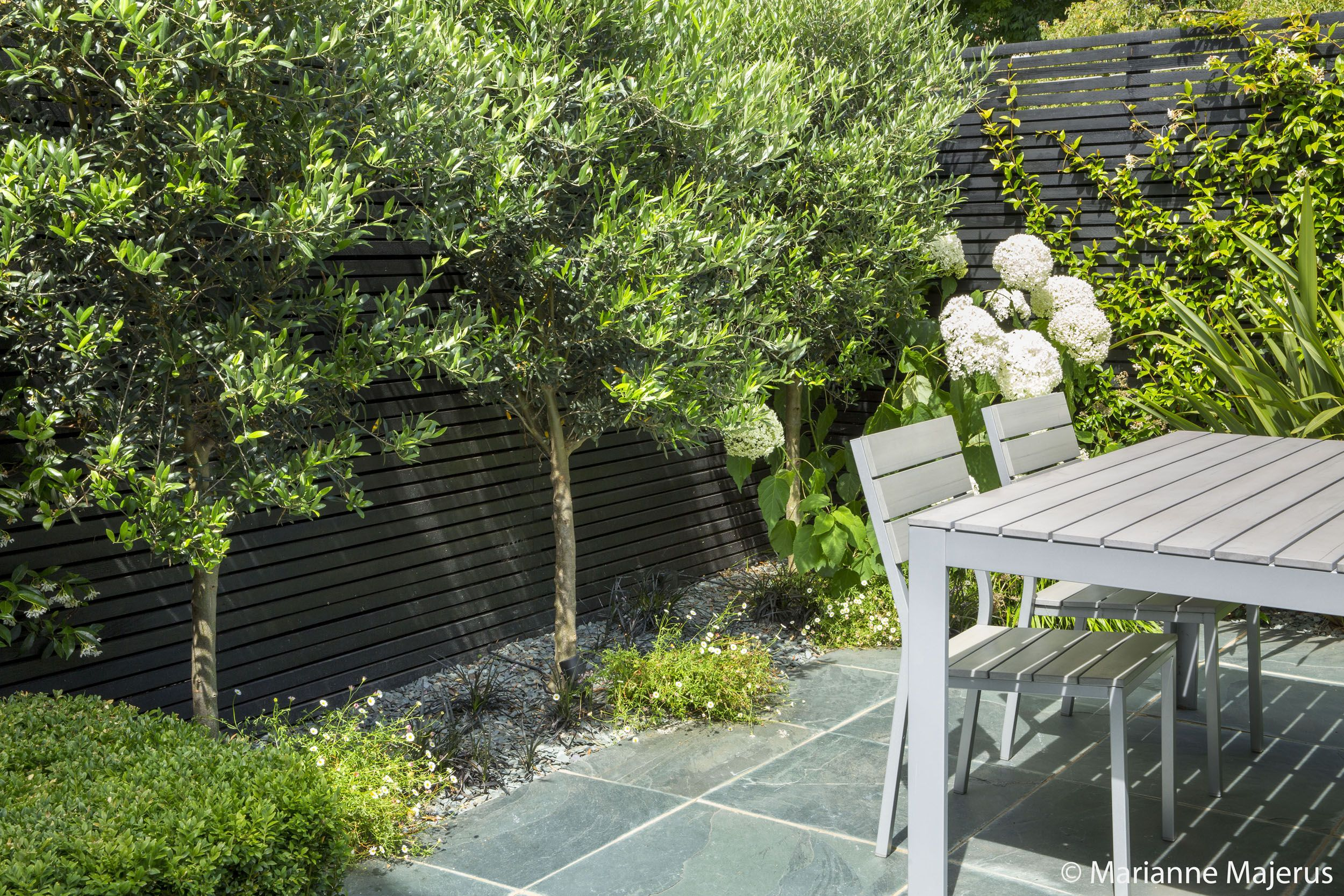 See pictures of a small urban garden recently transformed by the