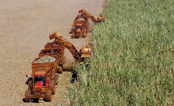 Grupo São Martinho registra lucro líquido de R$ 68,9 milhões no 4T16 - http://po.st/0MGVCC  #Empresas - #Açúcar, #Etanol-Anidro, #São-Martinho, #Vendas