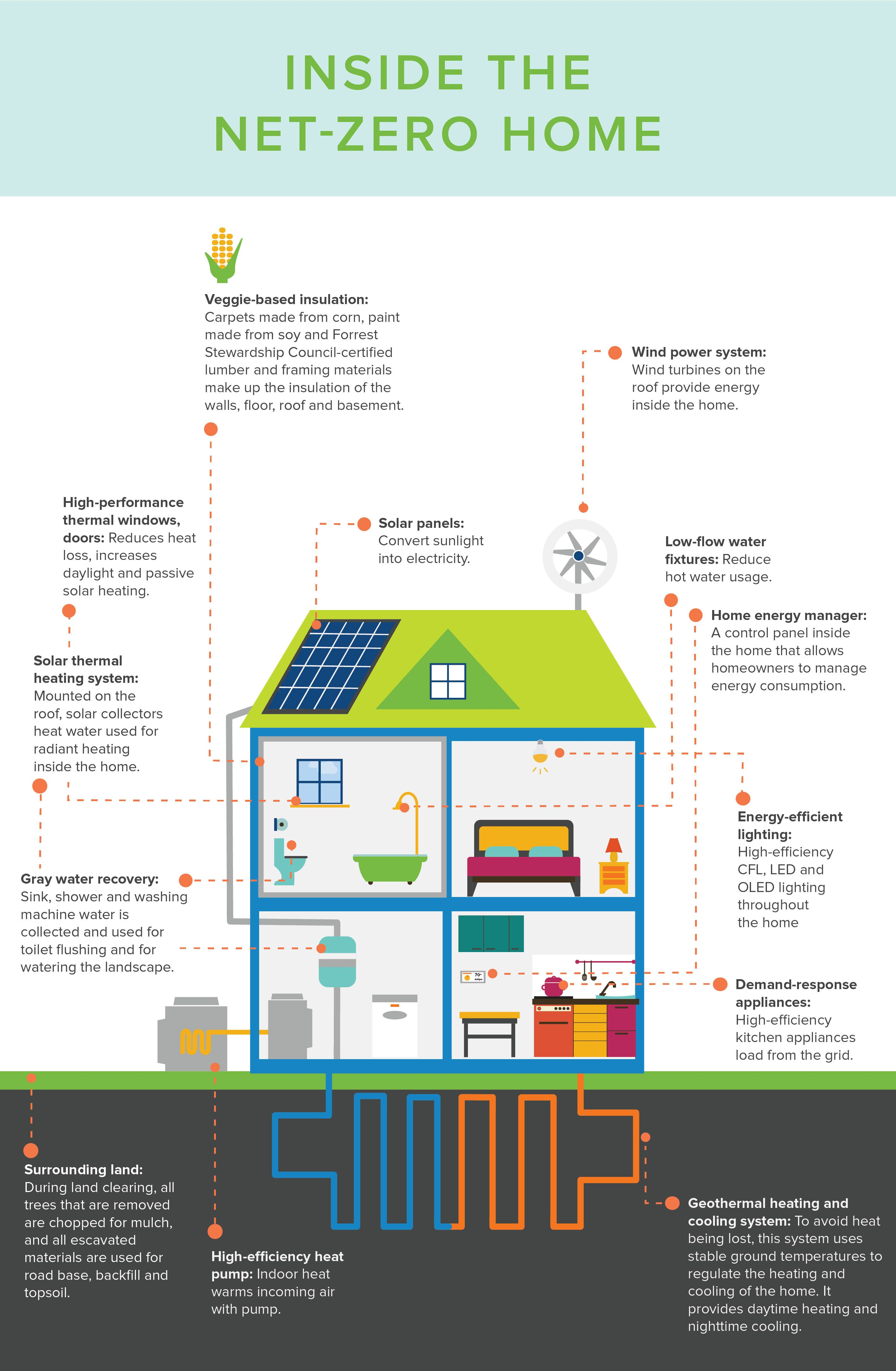 Infographic What netzero homes of the future will look
