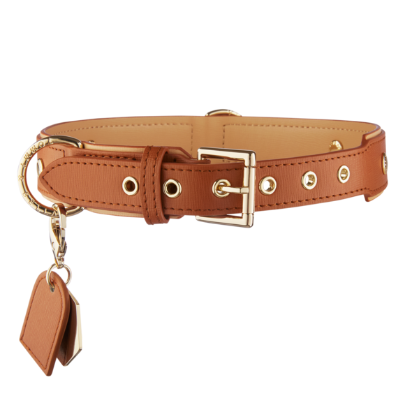 Brown Leather Two Dogs Set Pack Leash Collar Bag Name Tag Splitter Matching Gift