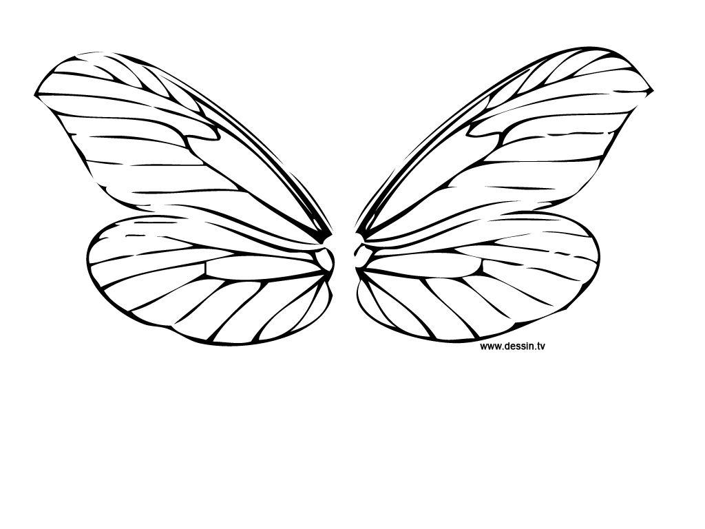 Aile De Papillon Dessin coloring dragonfly-wings | aile de fée | libellule, coloriage et