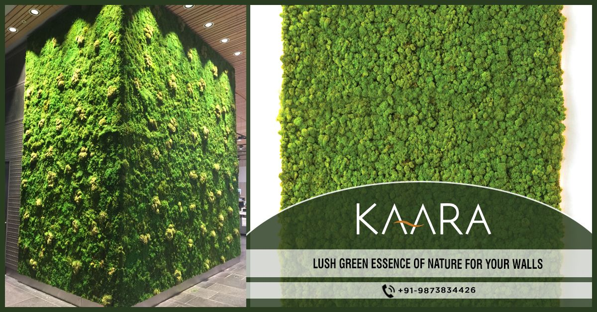 Get KAARA's Artificial Moss and bring in the essence of nature to your home or office with lush green walls around you. To buy, call us at +91-9873834426 OR mail us your details at contact@kaaradecor.com #ArtificialMoss #Kaara #Kaaradecor #Homedecor #Officedecoration #HomeDecoration #Nature #landscaping #homeimprovement