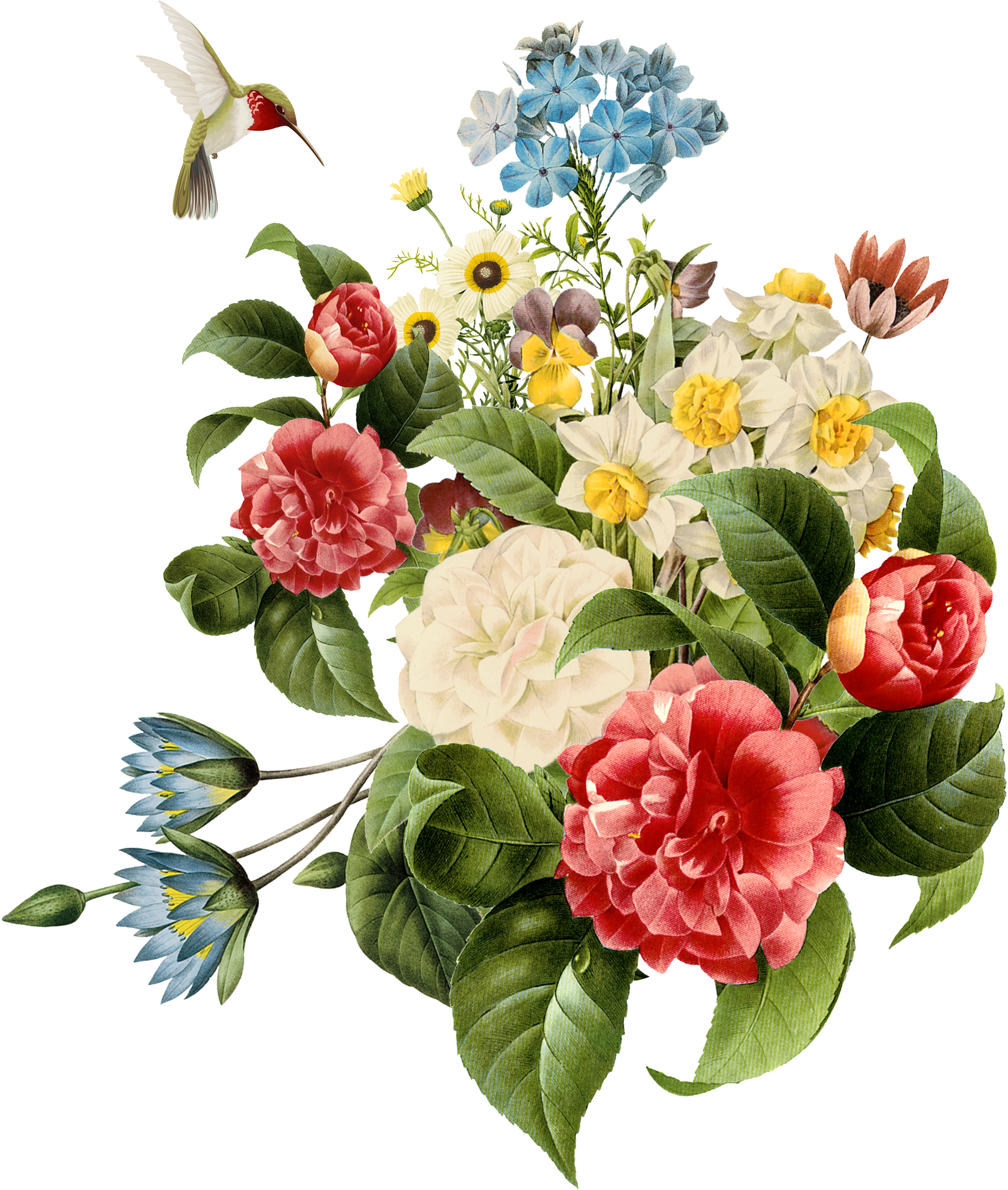 Find Hd Free Png Download Watercolor Flowers Vector Png Images Watercolor Flower Png Tra Watercolor Flower Vector Floral Design Drawing Flower Drawing Design
