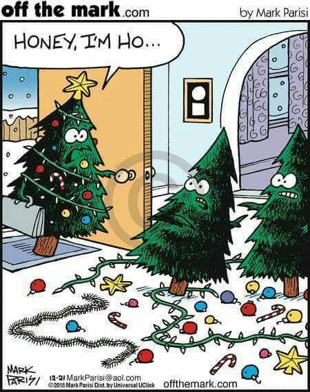 Pin By Suzanne Koopman On Abc Greeting Cards Christmas Humor