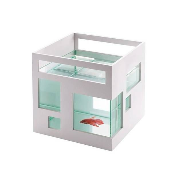 Appartement fish bowl.