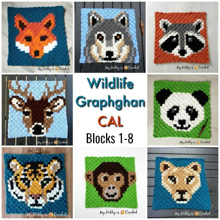 Wildlife Graphghan CAL | Crochet Blanket Patterns | C2c