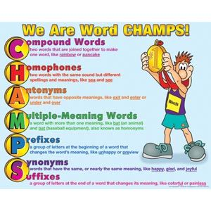 We Are Word Champs! Compound words, Homophones, Antonyms, Multiple ...