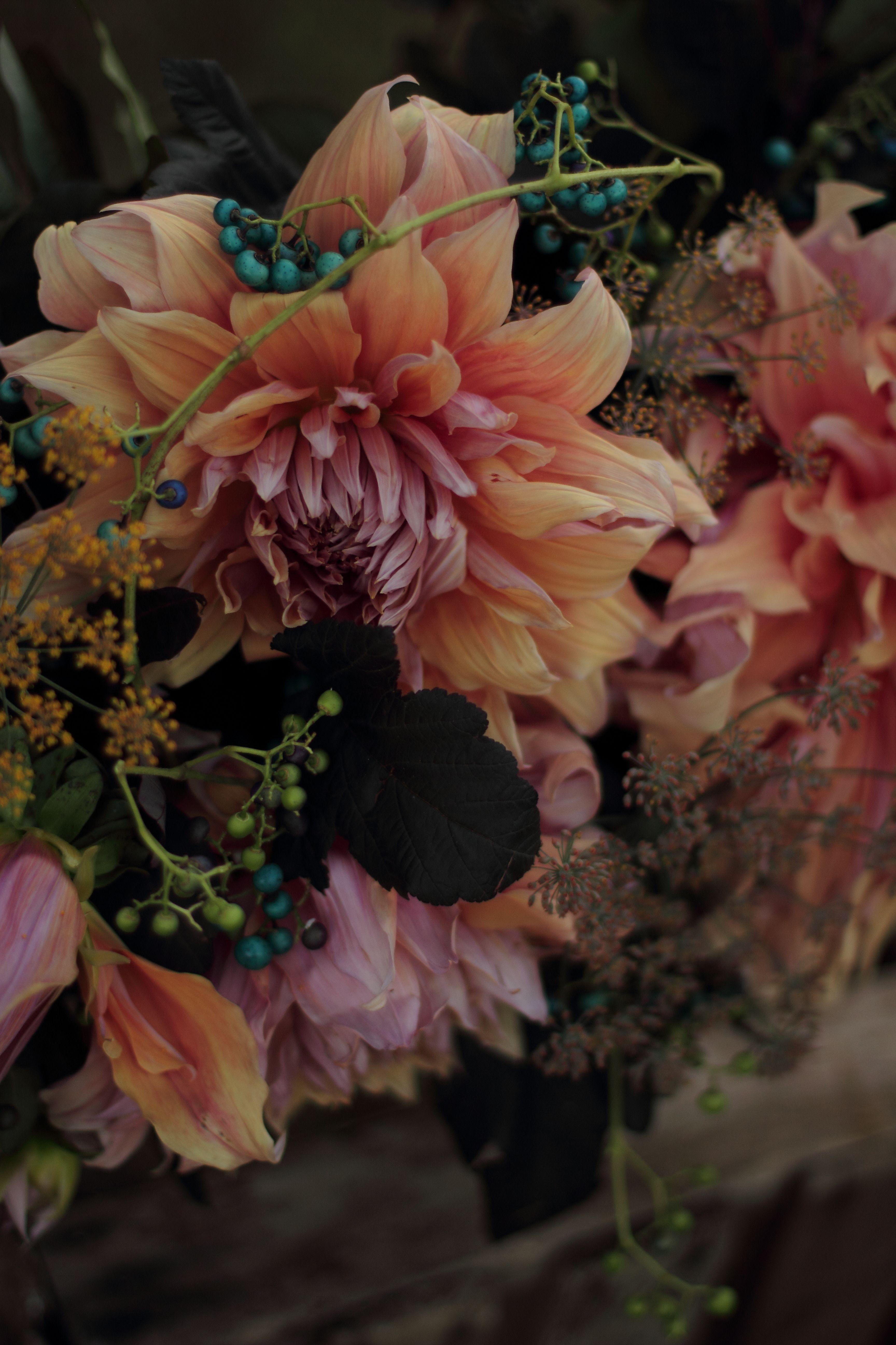 Love un Fresh Flowers flowers Pinterest Fresh flowers Dahlia